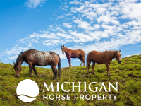 how to sell my michigan horse property